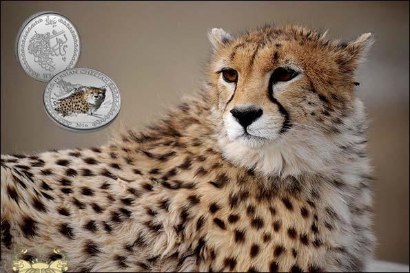 خانه سکه ایران برنامه حمایت از گونه های در معرض انقراض ایران را آغاز کرد