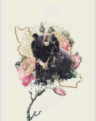 حمایت از خرس سیاه بلوچی